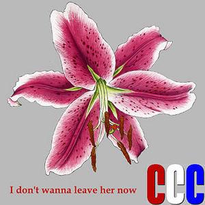 cccdontwannaweb.jpg